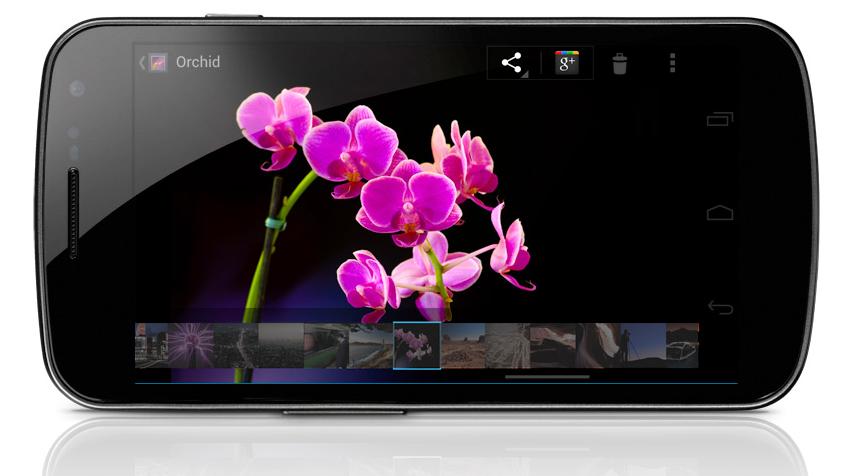 Samsung-Galaxy-Nexus-1.png