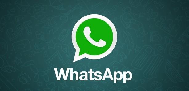 whatsapp-gif.jpg